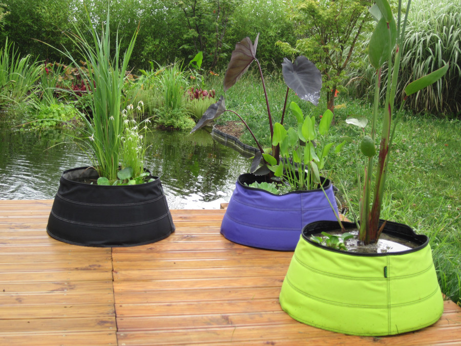 Vasche Da Giardino Plastica.Coltivare Le Piante Acquatiche Sul Terrazzo